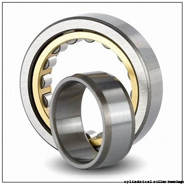 1.575 Inch | 40 Millimeter x 2.677 Inch | 68 Millimeter x 0.591 Inch | 15 Millimeter  NSK NU1008M  Cylindrical Roller Bearings