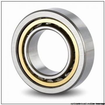 3.937 Inch | 100 Millimeter x 9.843 Inch | 250 Millimeter x 2.283 Inch | 58 Millimeter  CONSOLIDATED BEARING NJ-420 M W/23  Cylindrical Roller Bearings